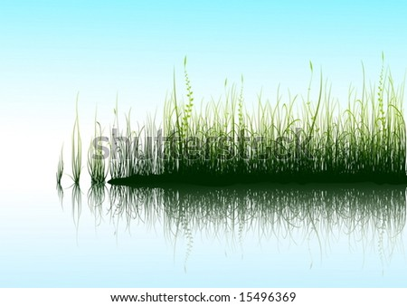 Green grass near blue water - vector - stock vector