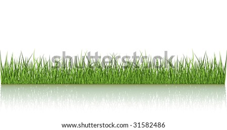 Green Grass Over The Water - stock vector
