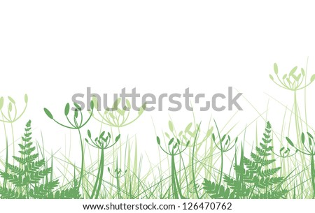 Green Grass Over White Background
