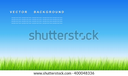 Green grass vector background. - stock vector