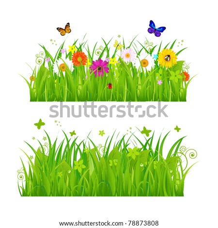 Green Grass With Flowers And Insects, Isolated On White Background, Vector Illustration - stock vector