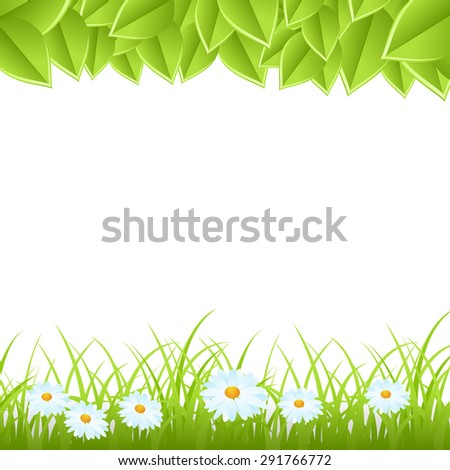 Green grass with flowers and leaves isolated on white background. Vector illustration - stock vector