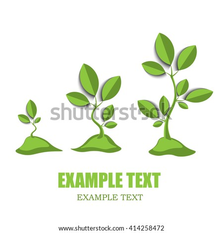 green growing tree with leaves on white, eco friendly logo, growth and development process - stock vector