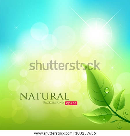 Green leaf natural background, vector illustration - stock vector