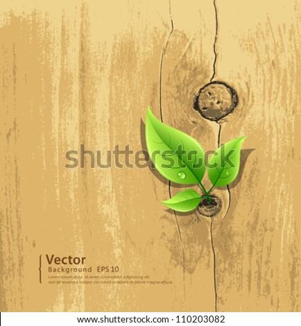 Green Leaf on old wood wallpaper background, vector illustration - stock vector