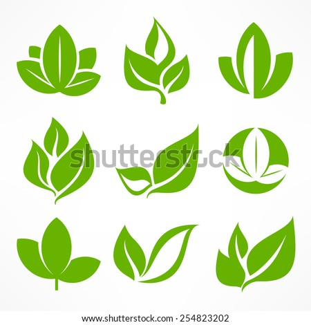 Green leaf signs, design elements, vector illustration. - stock vector