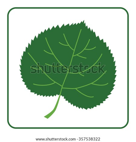 Green leaf silhouette icon. Concept Save the Planet. Care of Earth. Ecology flat design element. Eco green symbol of linden leaf isolated on white background. Organic nature Bio. Vector illustration - stock vector