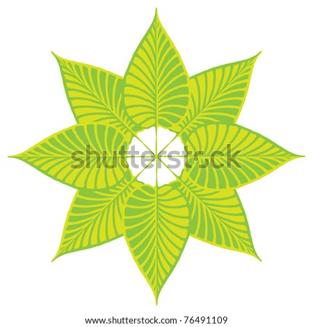 green leafs star - stock vector