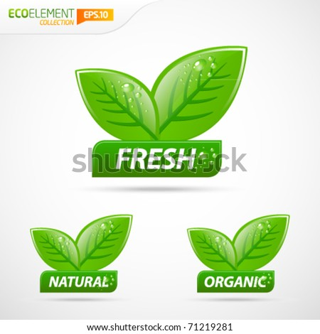 Green leafs with fresh natural and organic sign - stock vector