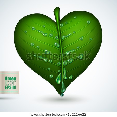 Green leave icon isolated -vector illustration. - stock vector