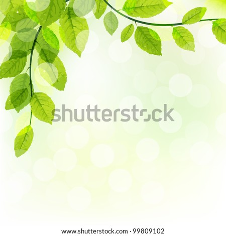 Green Leaves Background With Bokeh, Vector Illustration - stock vector