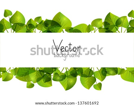 Green leaves background with place for text - stock vector