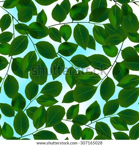 Green leaves canopy and sky in a seamless pattern.  sc 1 st  Shutterstock : canopy leaves design - memphite.com