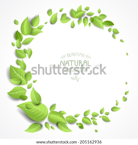 Green leaves frame on white background with copy space - stock vector