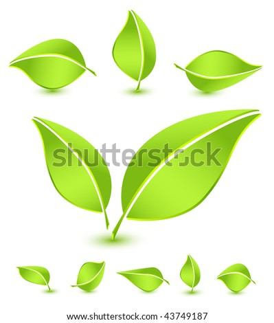 Green leaves icon set - stock vector