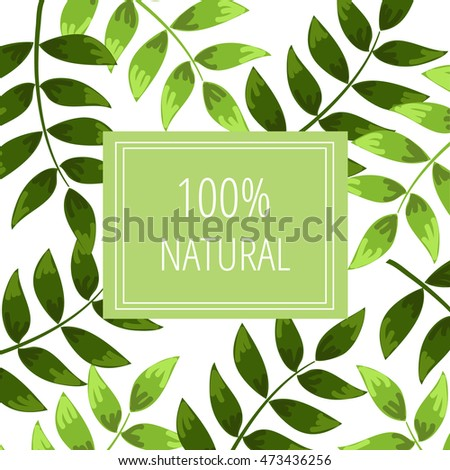 green leaves on a white backdrop with a card 100% Natural