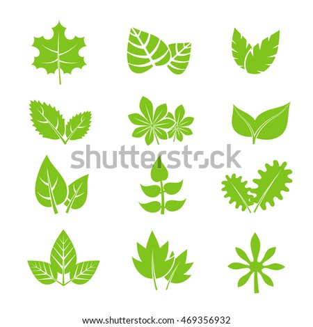 Green leaves vector icons set. Natural eco organic elements illustration