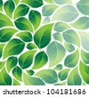 Green leaves with pointed ends. Environmental  background - stock vector