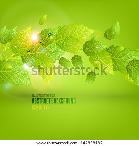 Green leaves with water drops and sun shine for summer design - stock vector