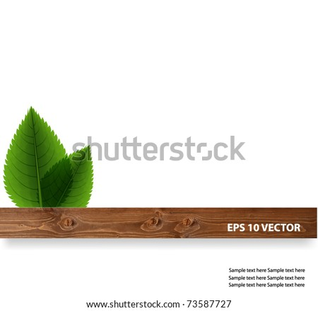 Green leaves with wood - stock vector