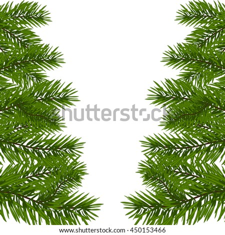 Green lush branch of spruce with the two sides. Fir branches. Isolated on white vector illustration - stock vector