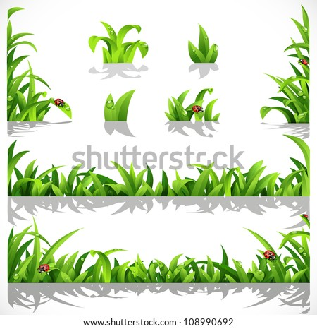 Green lush grass with dew and ladybirds - a set of elements for design - stock vector