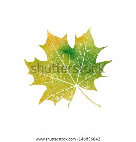 Green maple-leaf.  Eco design template. Autumn leaf. - stock vector