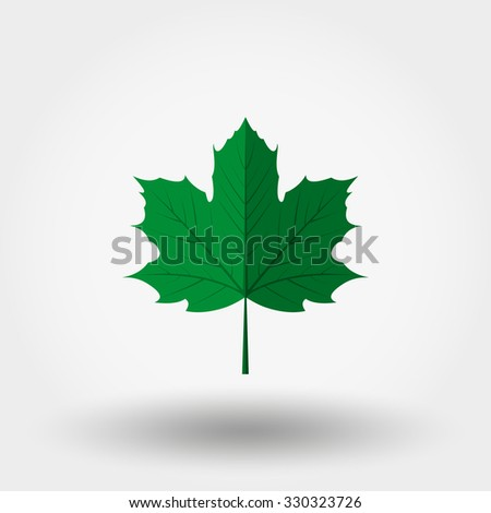 Green maple leaf. Icon for web and mobile application. Vector illustration on a white background. Flat design style. - stock vector