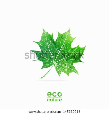 Green maple-leaf. Watercolor summer illustration. Eco design template. - stock vector