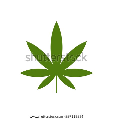 weed leaf template - medical marijuana cannabis vector flat stock vector