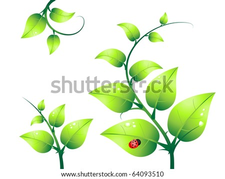green plant and ladybug vector - stock vector