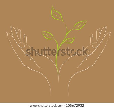 Green plant in female hands. A concept - the beginning of new life. Vector. - stock vector