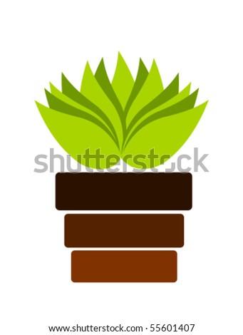 Green plant in pot. Vector illustration - stock vector