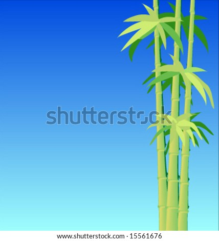 Green shoots of bamboo on a refreshingly clear day with a blue sky in the background good for menu or wallpaper
