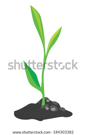 green sprout, growing out of a handful of ground
