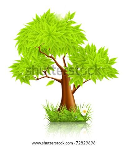 Green Tree, 10eps - stock vector