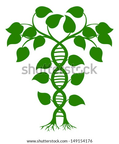Green tree illustration with the trees or vines forming a DNA double helix - stock vector