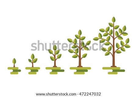 Green tree with leaf growth diagram. Business cycle development, vector illustration