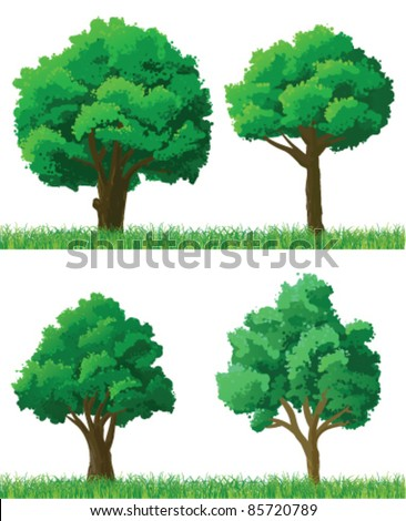 Green trees and grass set - stock vector