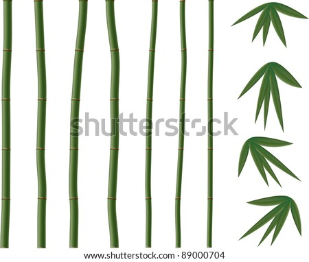 Green vector  bamboo elements.All objects are separated, the can be scaled  and moved without problems and quality loss. - stock vector