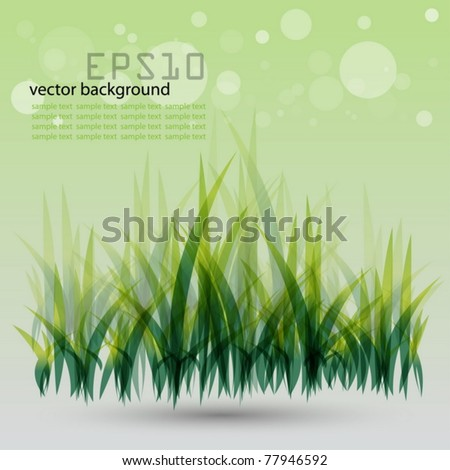 Green vector grass background with place for your text - stock vector