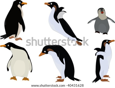 group of penguins - stock vector