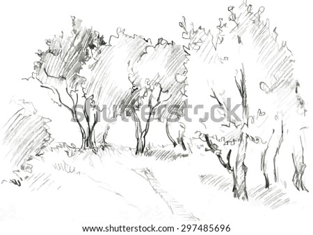 grove of deciduous trees, painted graphite pencil at the white background, hand drawn sketch of landscape, vector illustration - stock vector