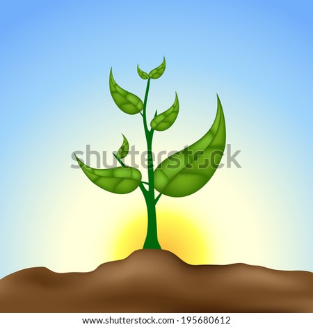 Growing plant - stock vector
