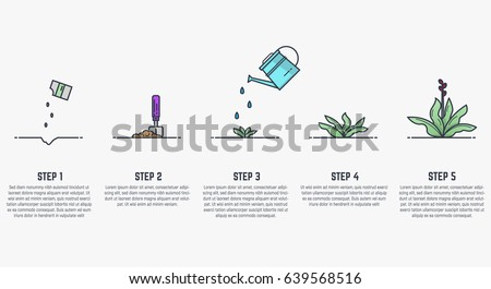 Plant Growth Stages Stock Images, Royalty-Free Images & Vectors ...