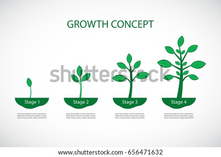 the four stages of growth a Bacteria are able to reproduce at an incredibly rapid pace in this lesson, we will examine the different phases of bacterial growth and how to.