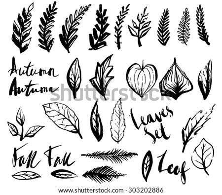 Grunge hand-drawn brushed leaves vector illustration - black ink - stock vector