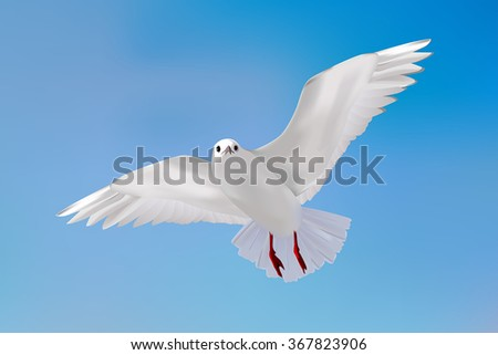 Gull in blue sky. Vector realistic illustration