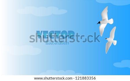 Gulls - stock vector
