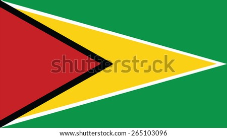 guyana Flag for Independence Day and infographic Vector illustration. - stock vector